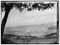 Beit Meri & Poroummana (i.e., Brummna) from Ras-el-Matn LOC matpc.00562.jpg