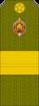 Belarus MIA—14 Senior Sergeant rank insignia (Olive)—SR.png