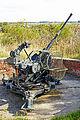Belgium-6264 - World War II 2 cm FLAK 38 (14009403524).jpg