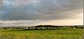 Beltany Panorama.jpg