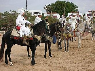 Barb horse - Image: Berber warriors show