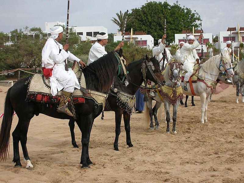 http://upload.wikimedia.org/wikipedia/commons/thumb/e/e5/Berber_warriors_show.JPG/800px-Berber_warriors_show.JPG