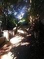 Berkeley Hills, Berkeley, CA, USA - panoramio.jpg