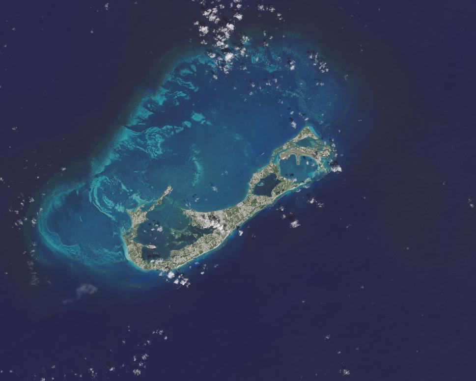 Bermuda oli 2014275 lrg-cropped