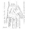 Bertillon - Identification anthropométrique (1893) 352 n&b.png