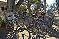 Bicicletas (27594581).jpeg