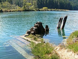 Big River (California) - Remains of old logging boom