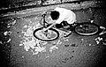 Biker (2516381418).jpg