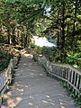 Blackwater Falls of Blackwater Falls State Park 06.jpg