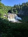 Blackwater Falls of Blackwater Falls State Park 10.jpg