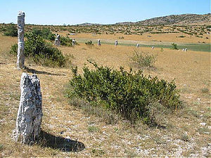 Blandas - Part of the Rigalderie stone circle in Blandas