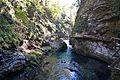 Bled - Vintgar Gorge - Radovna River (6318599323).jpg