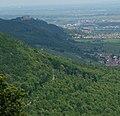 Blick auf das Hambacher Schloss - panoramio.jpg
