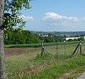 Blick vom Freudenbergerhof - panoramio.jpg
