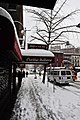 Blizzard Day in NYC (4392185848).jpg