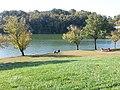 Blue Marsh Lake, Bernville, PA - panoramio (11).jpg