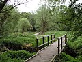 Boardwalk, Warnham Nature Reserve - geograph.org.uk - 237840.jpg