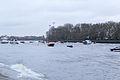Boat Race 2014 - Main Race (97).jpg