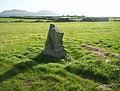 Bodfan Standing Stone - geograph.org.uk - 1087859.jpg