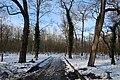 Bois de Boulogne neige 4.jpg