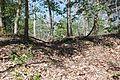 Boones Mounds, Arkansas DSC 0905 (8565772018).jpg