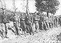 Borci partizanskog bataljona Vojin Zirojević kod Livna 1942. godine.jpg