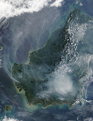Deforestation in Borneo - A satellite image of the island of Borneo on 19 August 2002, showing the smoke from burning peat swamp forests.