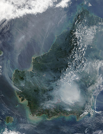 Borneo peat swamp forests - Image: Borneo fires and smoke, 2002