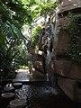 Botanischer Garten - Im Tropenhaus (Inside the Tropical House) - geo.hlipp.de - 26730.jpg