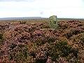 Boundary Stone, Green Howe - geograph.org.uk - 54643.jpg