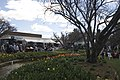 Bowral NSW 2576, Australia - panoramio (14).jpg