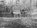 Brady, Mathew B. - Eselwagen der einen Bach überquert (Zeno Fotografie).jpg