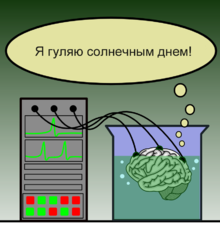 http://upload.wikimedia.org/wikipedia/commons/thumb/e/e5/Brain_in_a_vat_%28ru%29.png/220px-Brain_in_a_vat_%28ru%29.png