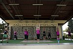 Breast cancer awareness event at Incirlik Air Base 111001-F-SF570-215.jpg