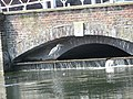 Bridge between ponds.jpg