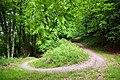 Bridleway hairpin, Duncton Hill - geograph.org.uk - 448954.jpg