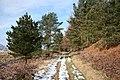 Bridleway near Raven's Crag - geograph.org.uk - 1750703.jpg