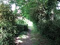 Bridleway running south from Wivelsfield Green - geograph.org.uk - 1389763.jpg