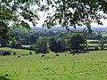Britcher Farm - geograph.org.uk - 45803.jpg