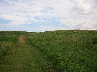 Buffalo River State Park (Minnesota) - Native prairie in Buffalo River State Park
