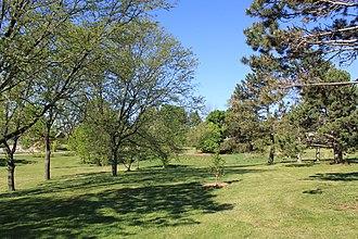Buhr Park - Buhr Park wooded area