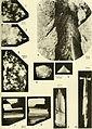 Bulletin (1967) (20394971346).jpg
