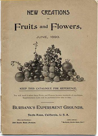 Обложка «New Creations in Fruits and Flowers», 1893 год.