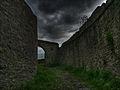 Burg Hornberg 1 (2).jpg