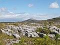 Burren National Park - geograph.org.uk - 801367.jpg