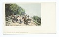 Burro Pack Train on Mountain Road, Burro (NYPL b12647398-62236).tiff