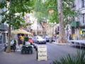 Céret, France, main street 2.jpg