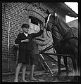 CH-NB - Ostpreussen- Pferde (Lokalisierung unsicher) - Annemarie Schwarzenbach - SLA-Schwarzenbach-A-5-13-001.jpg