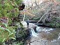 Caaf Water, Lynn Glen, Dalry.JPG