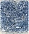 Calhoun Co. LOC 2012590174.jpg